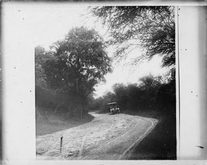 Primary view of object titled '[Model T on dirt road]'.