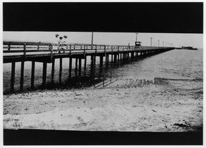 Primary view of object titled '[Photograph of Passenger Pier in Texas City]'.