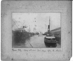 Primary view of object titled '[At the port in Texas City on August 19, 1915]'.