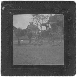 A Man and a Woman in a Horse Drawn Buggy