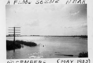 Primary view of object titled '[A flooded area. A utility pole in a grassy spot on the far left.]'.