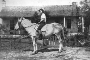 Primary view of object titled '[Woman on a Mule in Front of a House]'.