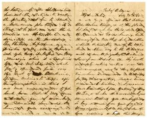 Primary view of object titled '[Letter from David Fentress to his wife Clara, July 12, 1863]'.