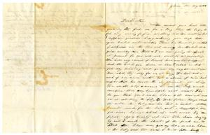[Letter from Sallie  Maud C. Fentress to David W. Fentress,  May 17, 1859]