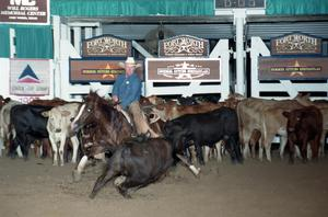 Primary view of object titled 'Cutting Horse Competition: Image 1997_D-100_28'.