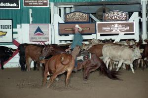 Primary view of object titled 'Cutting Horse Competition: Image 1997_D-107_28'.