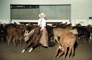 Primary view of object titled 'Cutting Horse Competition: Image 1997_D-10_11'.