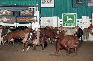 Primary view of Cutting Horse Competition: Image 1997_D-114_08