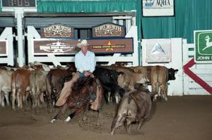 Man in cowboy hat rides a horse, surrounded by several cattle. Behind all of this is a white fence with signs that say Fort Worth on it.