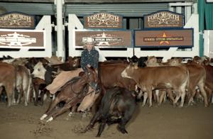 Primary view of Cutting Horse Competition: Image 1997_D-121_09