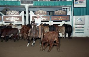 Primary view of object titled 'Cutting Horse Competition: Image 1997_D-132_09'.
