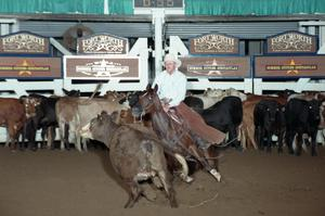 Primary view of object titled 'Cutting Horse Competition: Image 1997_D-133_08'.