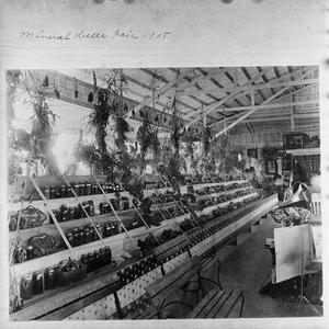 Primary view of object titled '[The Mineral Wells Fair of 1908]'.