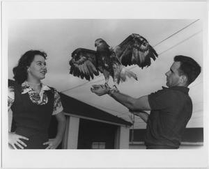 Foto en blanco y negro de un hombre a la derecha de la foto con su brazo izquierdo extendido. Hay un águila de pie en su muñeca con sus alas extendidas. En el lado izquierdo de la fotografía mirando al águila hay una mujer.