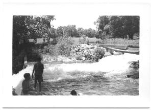 Primary view of object titled '[Children Playing in a Creek]'.