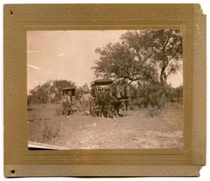 Primary view of object titled '[Photograph of Buggies at the Llano River]'.