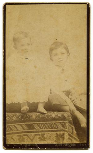 Primary view of object titled '[Portrait of Two Young Boys]'.
