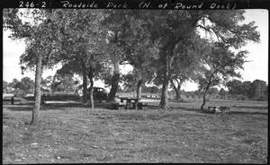 Primary view of object titled '[Roadside Park on U.S. Highway 81]'.