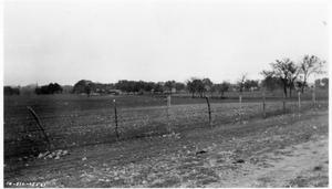 Primary view of object titled '[Proposed Warehouse Site U.S. Highway 81 in Georgetown]'.