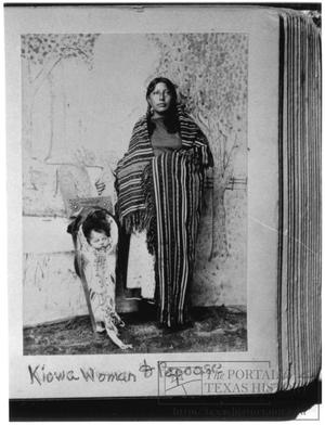 Primary view of object titled '[Portrait of a Kiowa Woman With a Papoose]'.