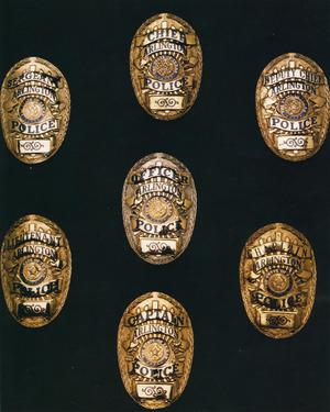 Primary view of object titled '[APD badges, current versions, view 1]'.