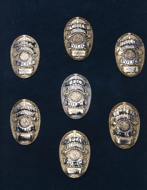 Primary view of object titled '[APD badges, current versions, view 2]'.