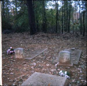 Primary view of object titled '[Cemetery in Harrison County]'.