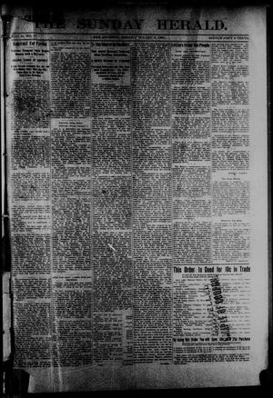 Primary view of object titled 'The Sunday Herald. (San Antonio, Tex.), Vol. 2, No. 17, Ed. 1 Sunday, January 6, 1901'.