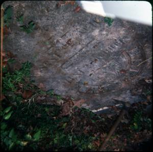 Primary view of object titled '[Old Tombstone]'.