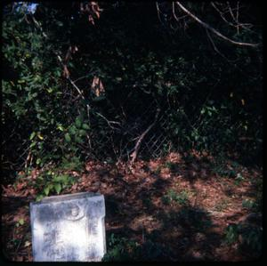Primary view of object titled '[Early Grave in Harrison County]'.