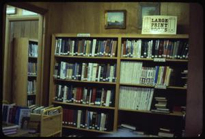 Primary view of object titled '[Bookshelves of Large Print Books #1]'.