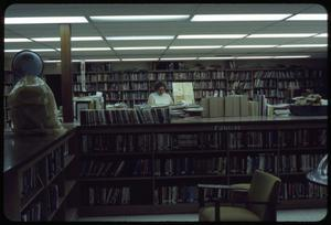 Primary view of object titled '[Woman Browses Library Shelves]'.