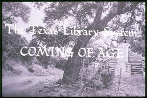 Primary view of object titled '[The Texas Library System: Coming of Age]'.