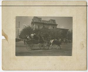Primary view of object titled '[Gentry's Trained Animal Show Wagon]'.