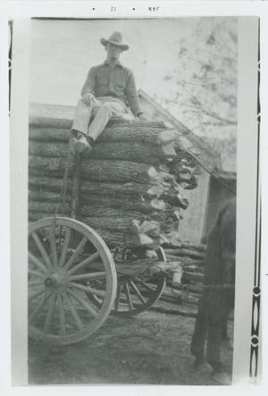 Primary view of object titled '[Man on truck loaded with wood]'.