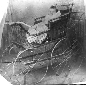 Primary view of object titled '[Baby in buggy]'.