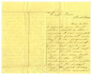 Primary view of object titled '[Letter from David S. Kennard to his sister, March 24, 1862]'.