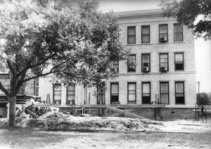 Primary view of object titled '[Fort Bend County Courthouse addition construction, large tree to the left]'.