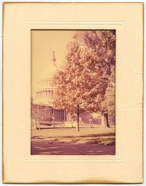 Primary view of object titled 'Photograph of the Grounds of the U.S. Capitol'.