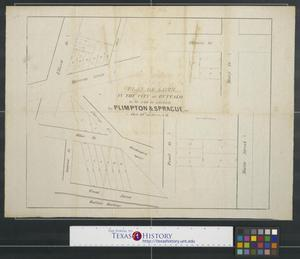 Primary view of object titled 'Plan of lots in the city of Buffalo to be sold at auction by Plimpton & Sprague on Oct. 14th at 10 a.m.'.