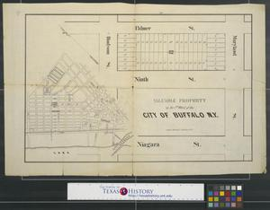 Primary view of object titled 'Valuable Property in the 5th Ward of the City of Buffalo N.Y.'.