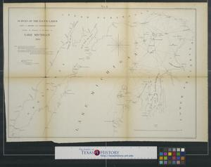 Primary view of object titled 'Survey of the n. & n.w. lakes, showing the progress of the survey in Lake Michigan'.
