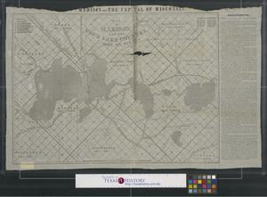 Primary view of object titled 'Map of Madison and the Four Lake Country, Dane Co. Wis.'.