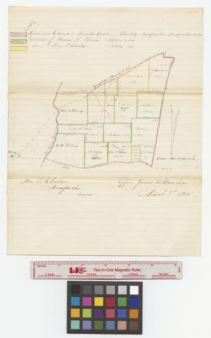 Primary view of object titled 'Portion of Antonio (or Edward) Arriola Grant, quantity indefinite, Nacogdoches Co., Tx'.