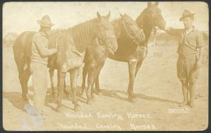 Primary view of object titled '[Wounded Cavalry Horses]'.