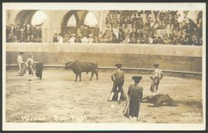 Primary view of object titled '[Mexican Bull Fight]'.