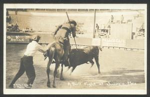Primary view of object titled '[Bullfight in Mexico 2]'.