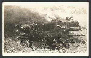 Primary view of object titled '[Cremating Bodies on a Mexican Battlefield]'.