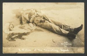 Primary view of object titled '[Executing Squad Victim]'.