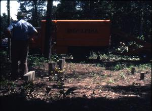 Primary view of object titled '[Cemetery Cleanup, Marshall]'.